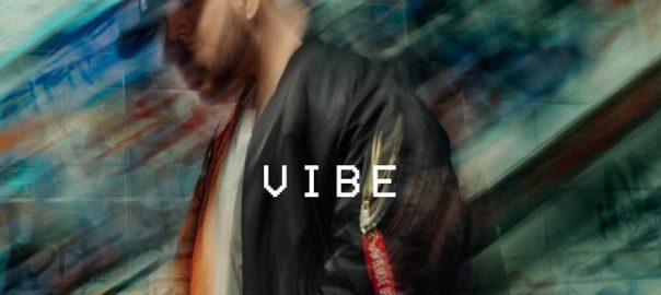 fler-vibe-vinyl-cover